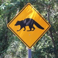 Image result for images WARNING ROAD SIGNS IN IGUAZU FOR ANIMALS